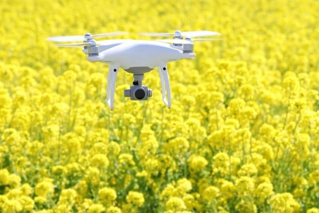 ドローン・IT農業事業 イメージ写真